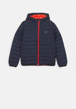Quiksilver - SCALY YOUTH - Winterjacke - parisian night