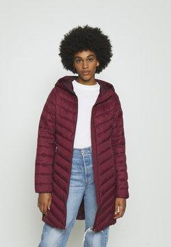 Hollister Co. - Veste d'hiver - burgundy