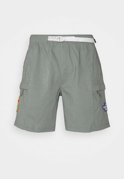 The North Face - CLASS V BELTED - Outdoor Shorts - agave green