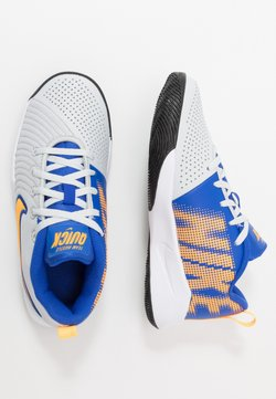 Nike Performance - TEAM HUSTLE QUICK 2 - Zapatillas de baloncesto - pure platinum/laser orange/hyper royal