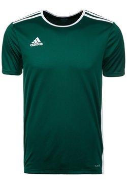 adidas Performance - ENTRADA - T-Shirt basic - dark green