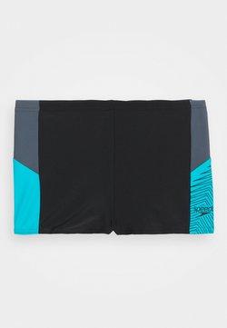 Speedo - DIVE AQUASHORT - Costume da bagno - black/oxid grey/hypersonic blue