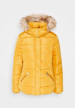 Esprit - JACKET - Winterjacke - brass yellow