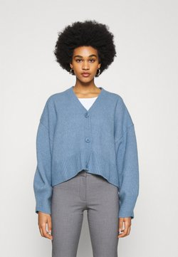 Weekday - CORA CARDIGAN - Kardigan - dove blue
